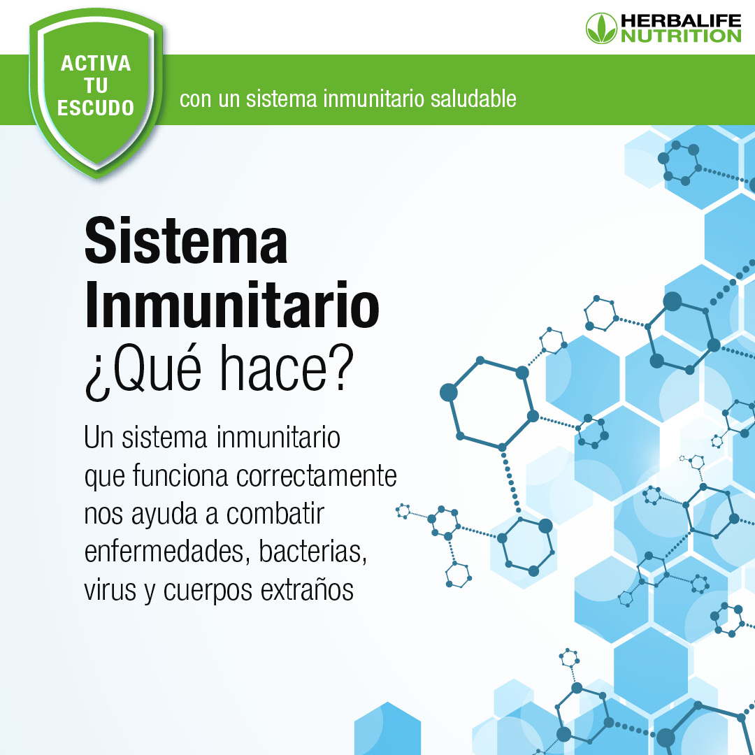sistema inmunitraio 1